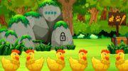Golden Hen Rescue